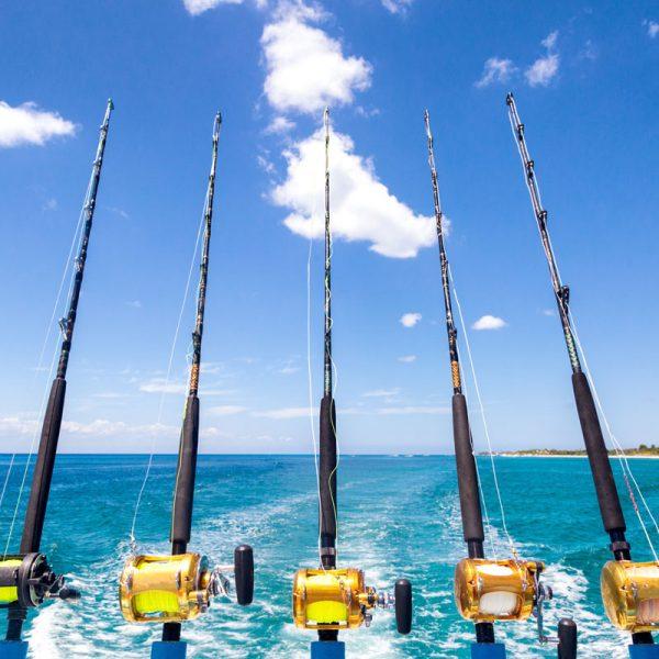 Fishing sponsorships